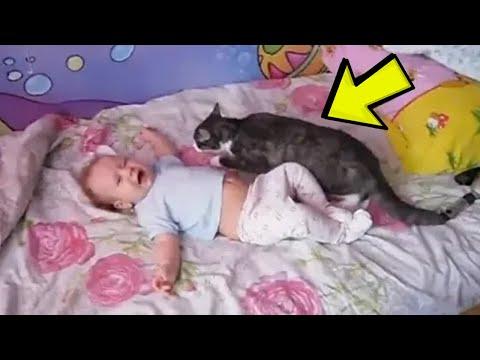 Beba je bespomoćno ležala na krevetu, a ono što je mačka uradila ćete posmatrati u čudu!