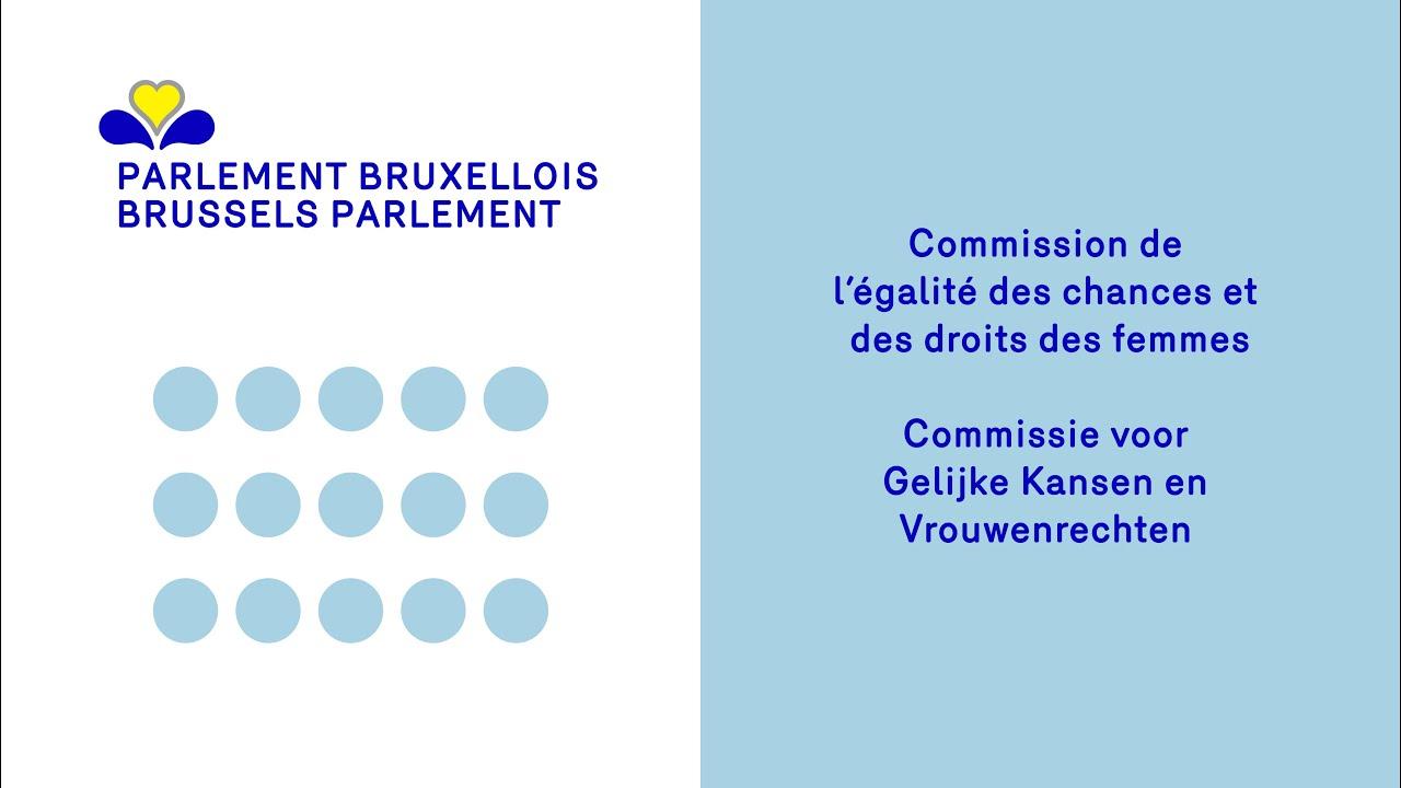 Réactieve Assemblee: Interventie in de Commissie Gelijke Kansen over Cyber-violence