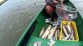 Здесь рыбы валом!!!Сбылась мечта!!Рыбалка на спиннинг в Астрахани.