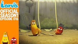 official spaghetti - larva season 1 episode 16