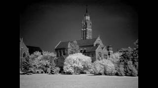 Lesson 13: Infrared Photography Tips