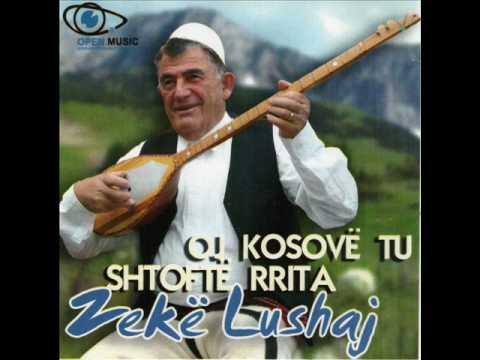 Zekë Lushaj Kënga për Halil Gashin