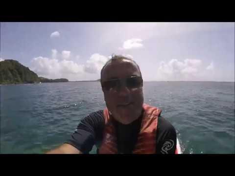 St Lucia 2017 - Underwater life