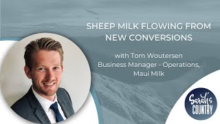 """Sheep milk flowing from new conversions"" with Tom Woutersen"