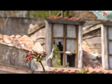 Крым. Территория весны. Специальный репортаж