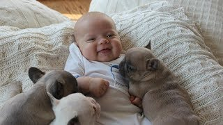 Animals Love Babies - Cute Babies & Animals Compilation