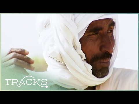 Mystery in Sudan: The Lost Pharaohs | TRACKS
