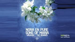 Nora En Pure & Sons Of Maria - Uruguay (DBMM Remix) TEASER