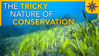 The Tricky Nature of Conservation