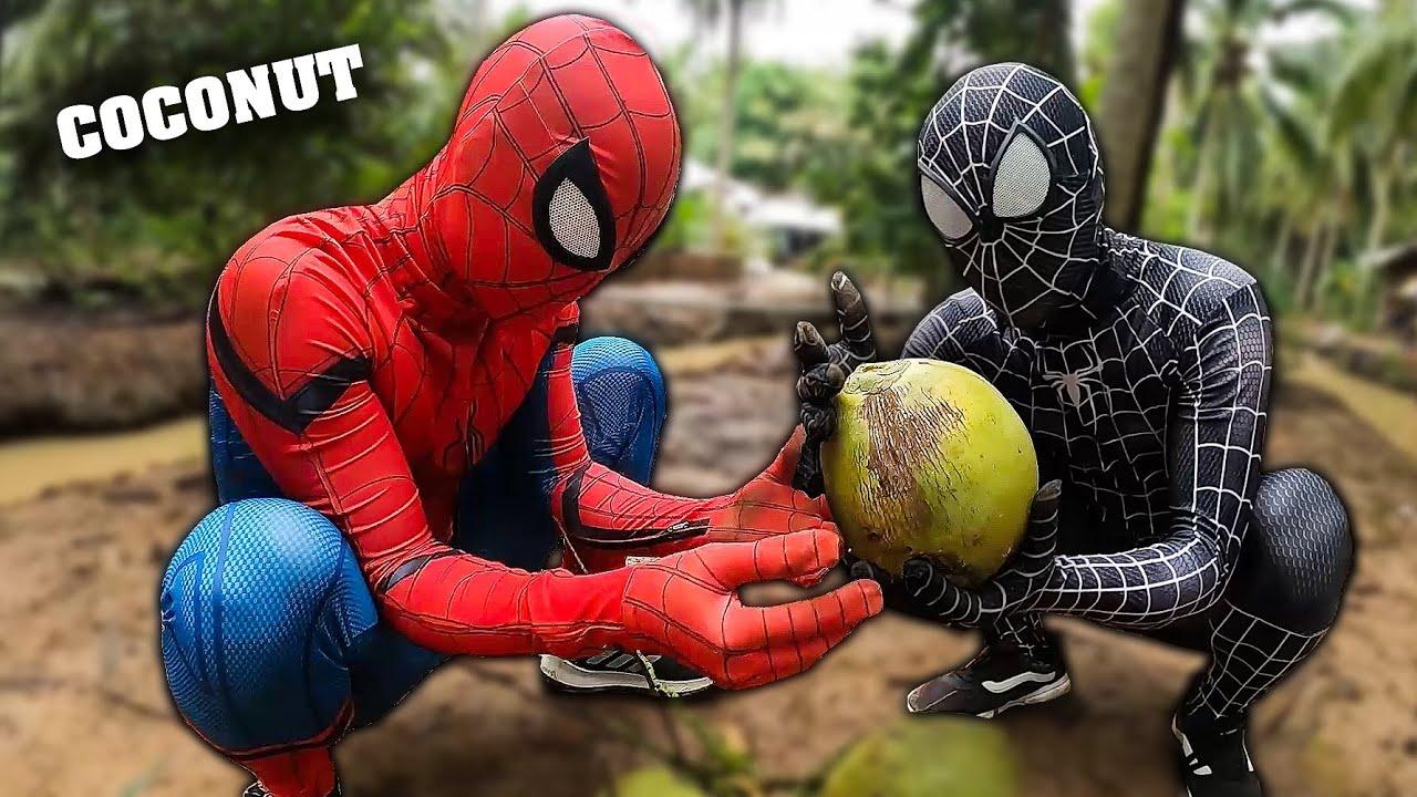 SPIDER-MAN vs VENOM in real life | COCONUT BATTLE | Người Nhện bị Venom cướp dừa