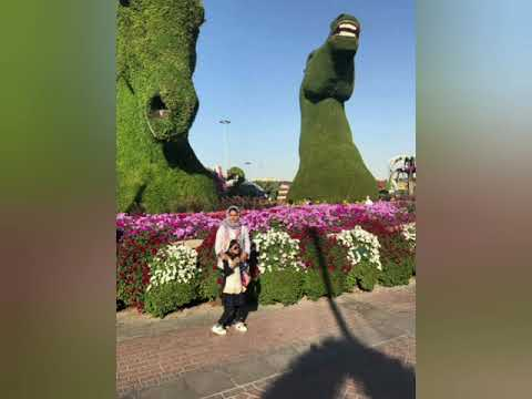 Miracle garden Dubai….a must visit in uae