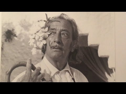 Worlds Greatest Kiting 72 -  Salvador Dali & The Fountain of Youth