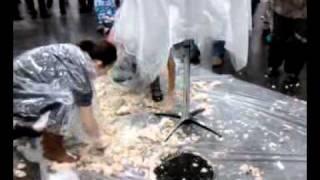 Trash the Cake Springfield Bridal Expo 1/15/2012
