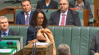 видео Абориген Австралии. Австралийские аборигены - фото