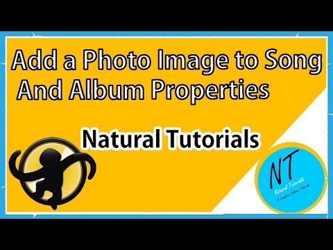 How To Add Picture Image To song And Song Album Composer And Song Properties Using MediaMonkey In En