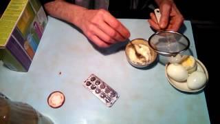 Как приготовить смесь для птенцов с первого дня . Чем кормить  птенцы . Что едят птенцы