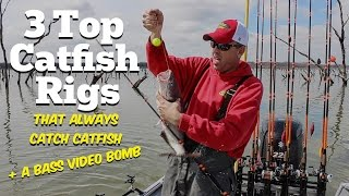 The 3 Top Catfish Rigs (That Always Catch Catfish)