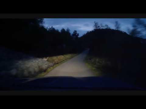 Sub Focus Last Jungle(Music Video Drive)