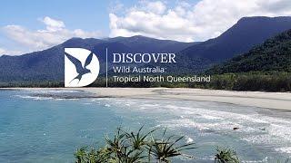 Wild Australia: Tropical North Queensland