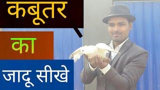 कबूतर का जादू सीखे    Dove magic trick revealed in hindi