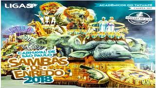 SAMBAS ENREDO 2018 SÃO PAULO (ESPECIAL E ACESSO)