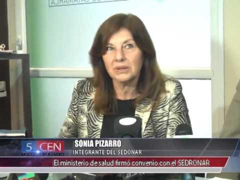 RAMON FIGUEROA CASTELLANO Y SONIA PIZARRO