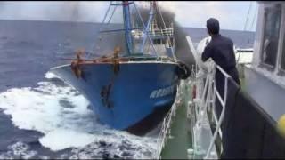 尖閣ビデオが流出か 中国漁船が衝突の映像 Senkaku