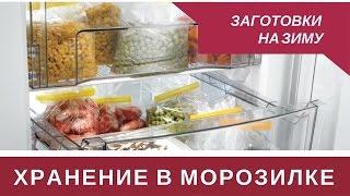 Организация и Хранение в Морозильной Камере
