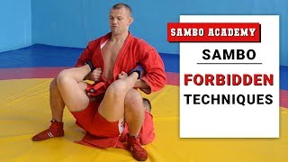 Baixar Illegal actions and techniques in sambo and combat sambo. Sambo rules FIAS