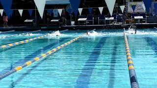 Max's First Swim Meet(2)
