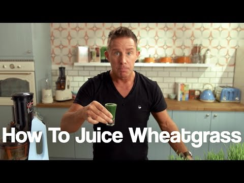 Juicy Tips - Juicing Wheatgrass in Your Cold Press Juicer