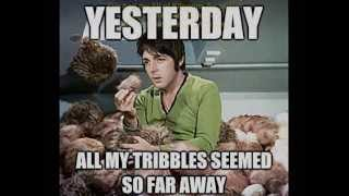 Yesterday...All my Tribbles seemed so far away