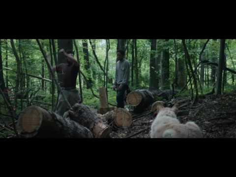 Llega de noche - Trailer final español (HD)