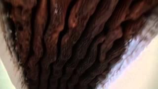 Abeilles. Colonie entre plancher et plafond    Honey bee colony removal