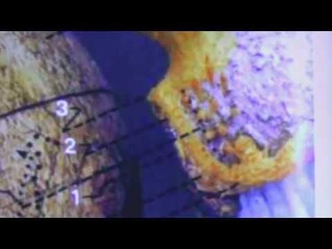 HOW EMVs SHAPE SURFACES OF CELESTIAL BODIES