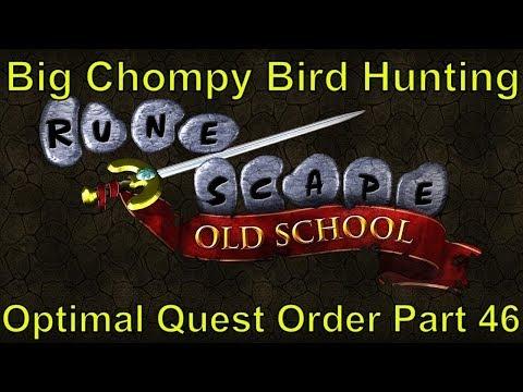 Big Chompy Bird Hunting Part 46 Osrs Optimal Quest Order