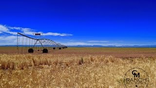 SOLD - Trinity Farm in Reeves County