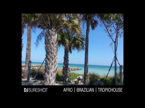 Afro | Brazilian | Latin | Tropichouse - October 2017