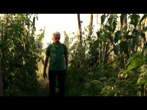 Luiz Geraldo de Oliveira Moura: Finalista do Prêmio Empreendedor Social 2009