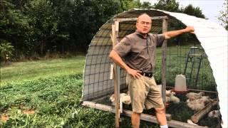 Build Your Own Chicken Hut