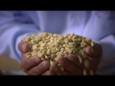 Aromi del Perù: caffé e cacao - life
