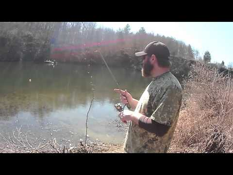 Trout Fishing With a Bass Surprise
