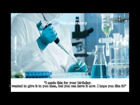 Lesson 2: The Laboratory