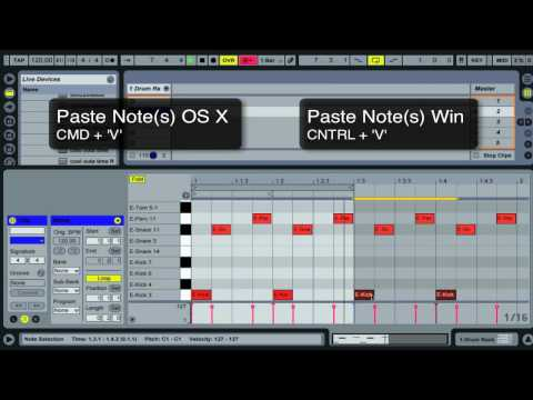 Ableton Live Tutorial | Keyboard Shortcuts Pt 1 - Midi Editing