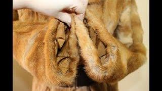 видео Советы по уходу за меховыми изделиями