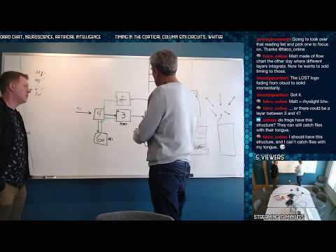 Timing In The Cortical Column SMI Circuits, Whiteboard Chat, Neuroscience, Artificial Intelligence