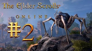 Арена : The Elder Scrolls Online #2