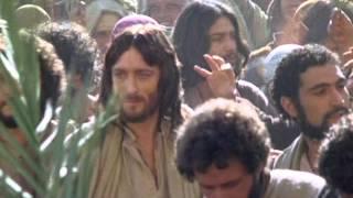 """""""BENEDETTO COLUI CHE VIENE NEL NOME DEL SIGNORE""""(Mt.21,1-11)"""