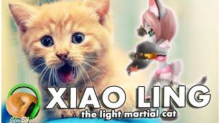 SUMMONERS WAR : Xiao Ling the Light Martial Cat (gameplay spotlight)