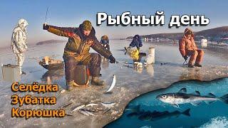 Моим снастям завидуют все рыбаки Ловится селедка зубатка корюшка навага Рыбалка на самодур